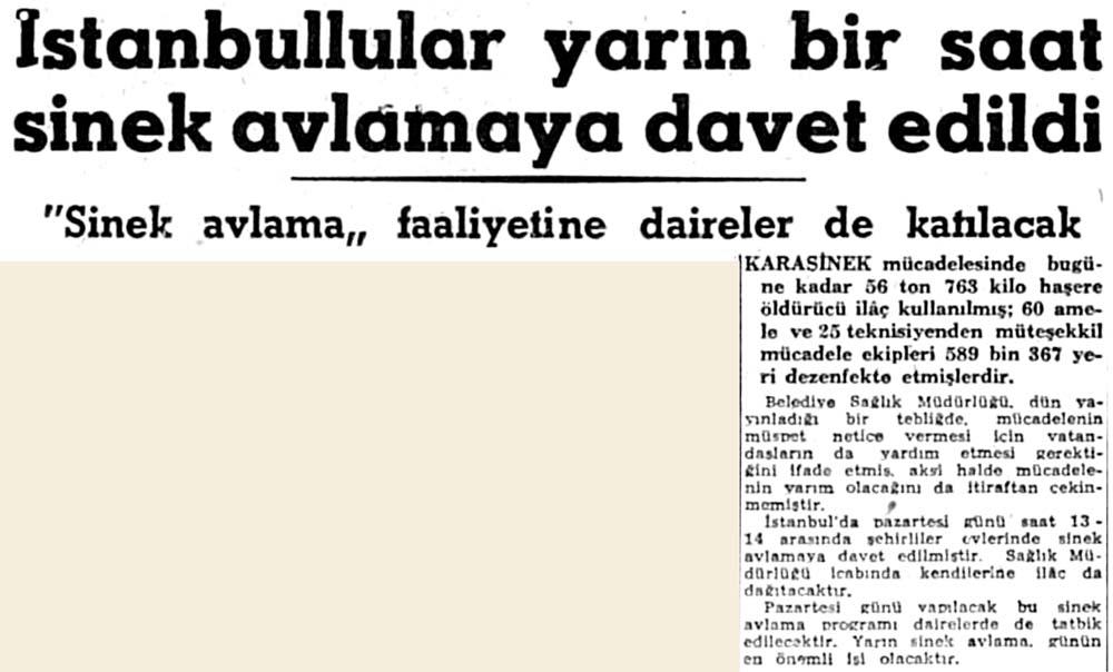 İstanbullular sinek avlamaya davet edildi