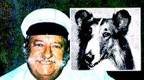 Güle Güle Lassie