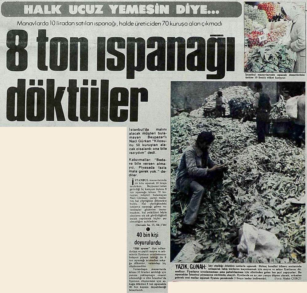 Halk ucuz yemesin diye 8 ton ıspanağı döktüler