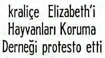 Atlarını kasaplara satan kraliçe Elizabeth'i Hayvanları Koruma Derneği protesto etti