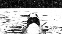 Apollo-8, Ay etrafında dönüşe başlıyor