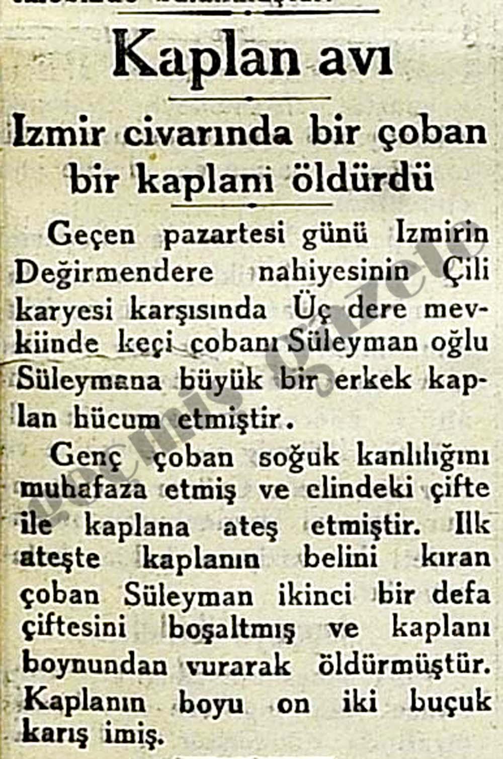 İzmir civarında bir çoban bir kaplanı öldürdü