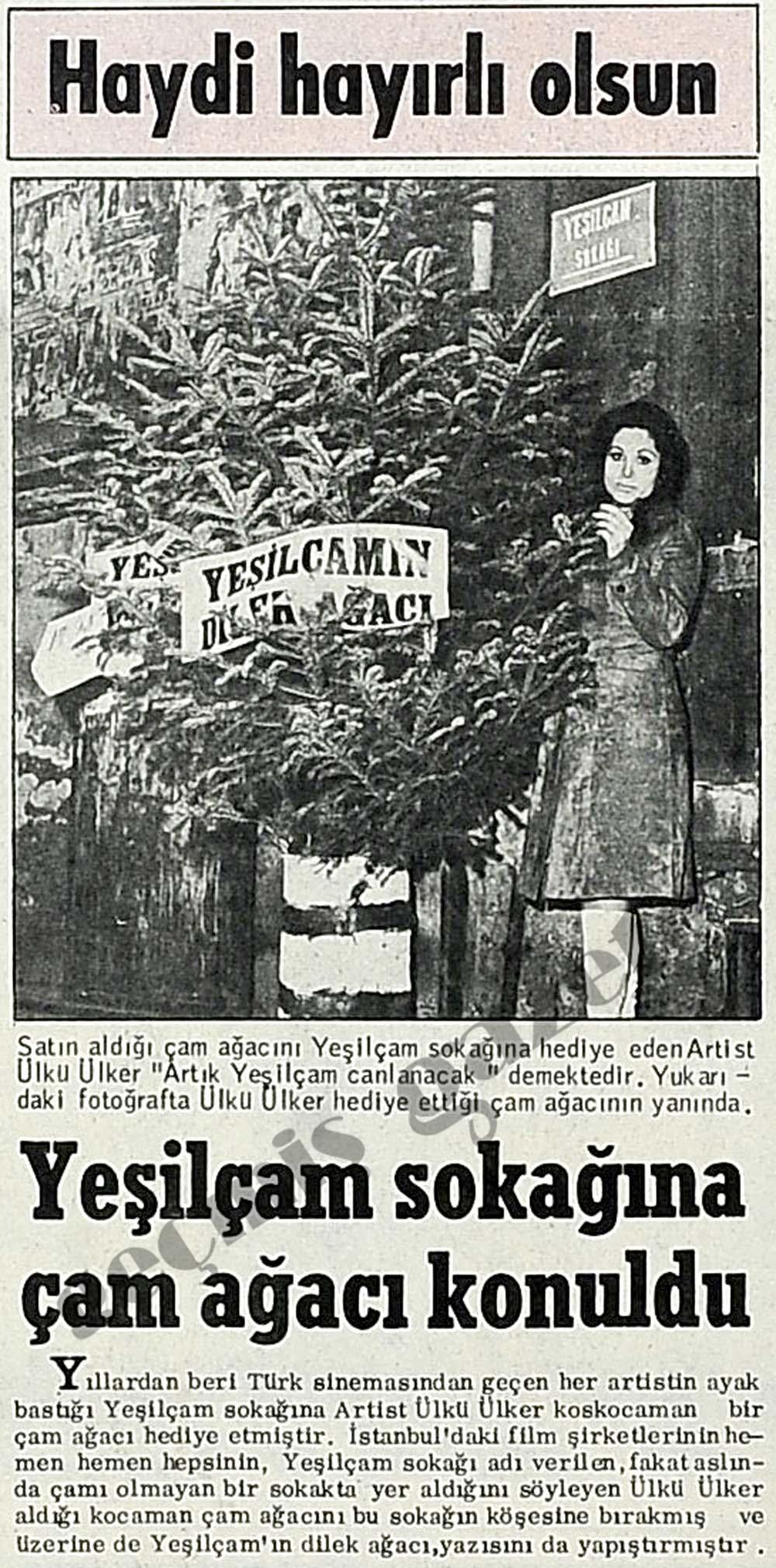Yeşilçam'a çam ağacı