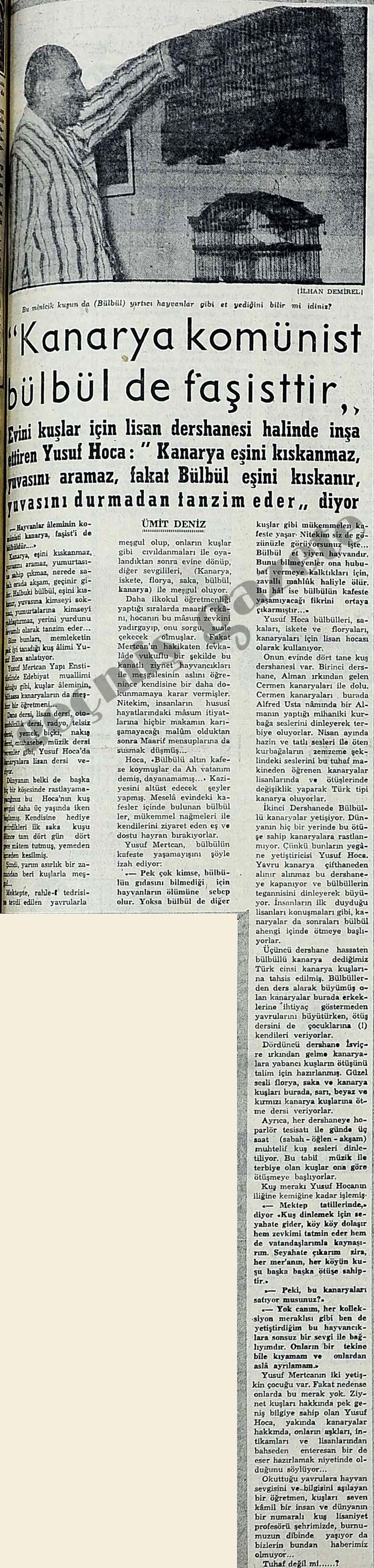 """""""Kanarya komünist bülbül de faşisttir"""""""