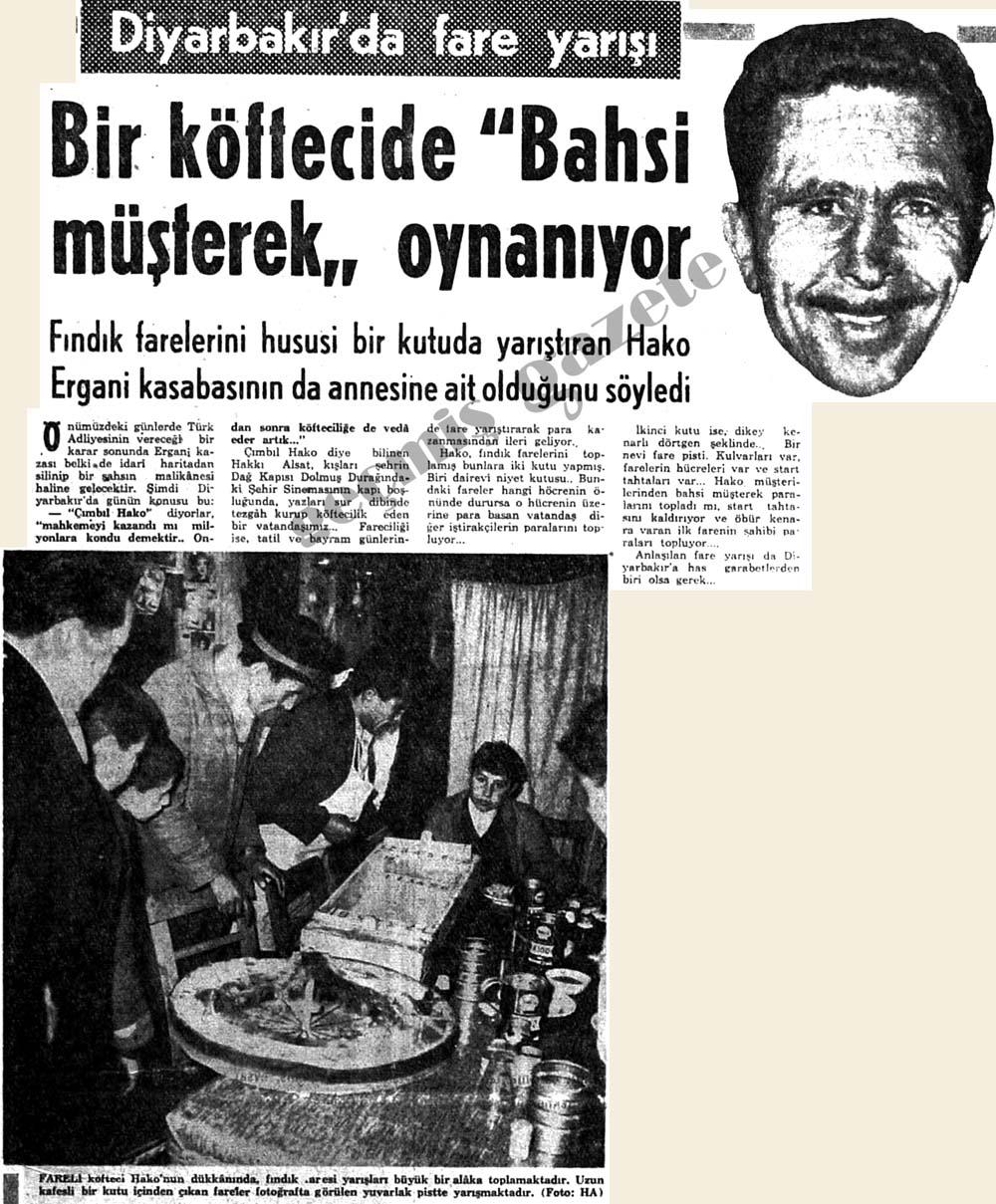 """Diyarbakır'da fare yarışı Bir köftecide """"Bahsi müşterek"""" oynanıyor"""