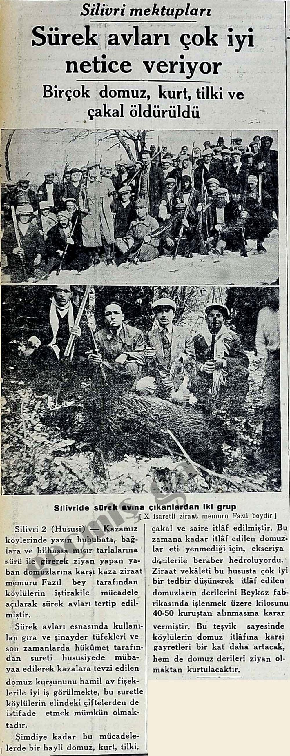 Sürek avları çok iyi gidiyor Birçok domuz, kurt, tilki ve çakal öldürüldü