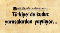 Türkiye'de kuduz yarasalardan yayılıyor