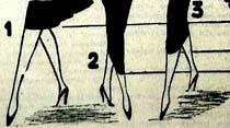 Kadınların eteklerini kısaltmak doğru olur mu?
