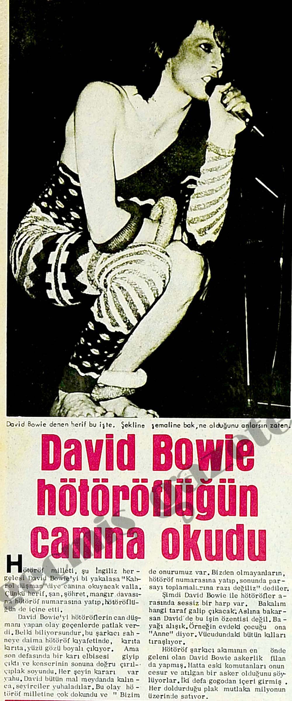David Bowie hötöröflüğün canına okudu