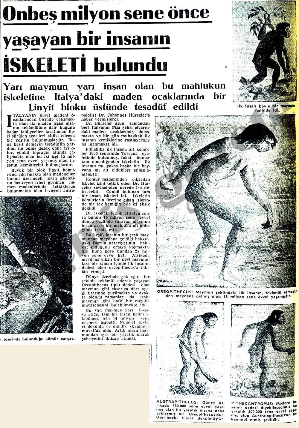 Onbeş milyon sene önce yaşayan bir insanın iskeleti bulundu