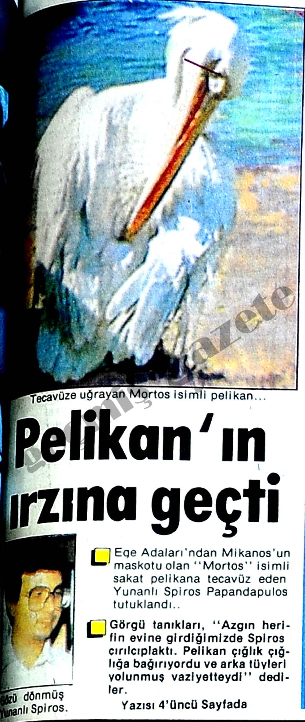 Pelikan'ın ırzına geçti