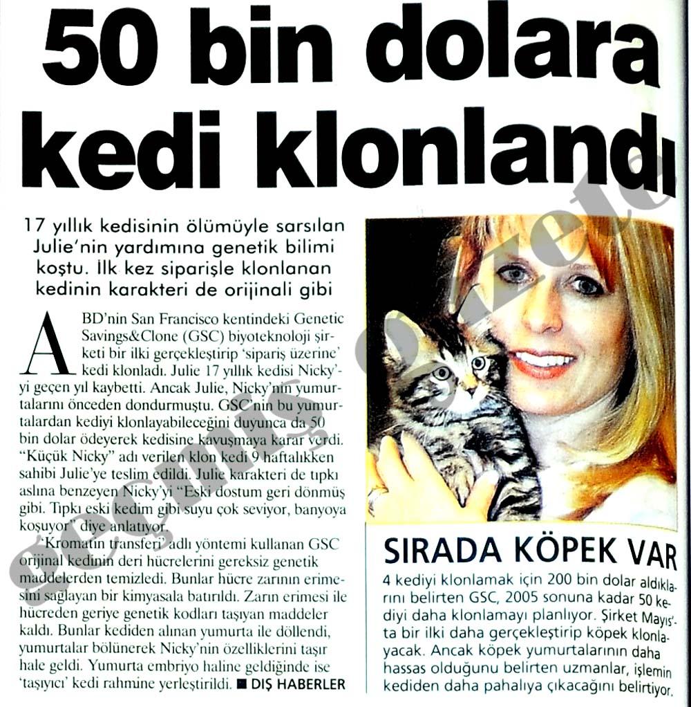 50 bin dolara kedi klonlandı