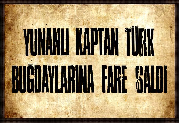Yunan kaptan Türk buğdaylarına fare saldı