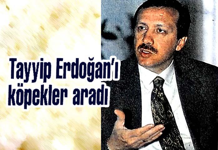 Tayyip Erdoğan'ı köpekler aradı