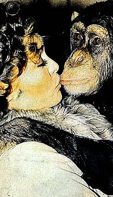 Dünyanın en şanslı maymunu