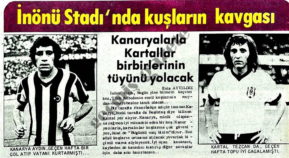 İnönü Stadı'nda kuşların kavgası