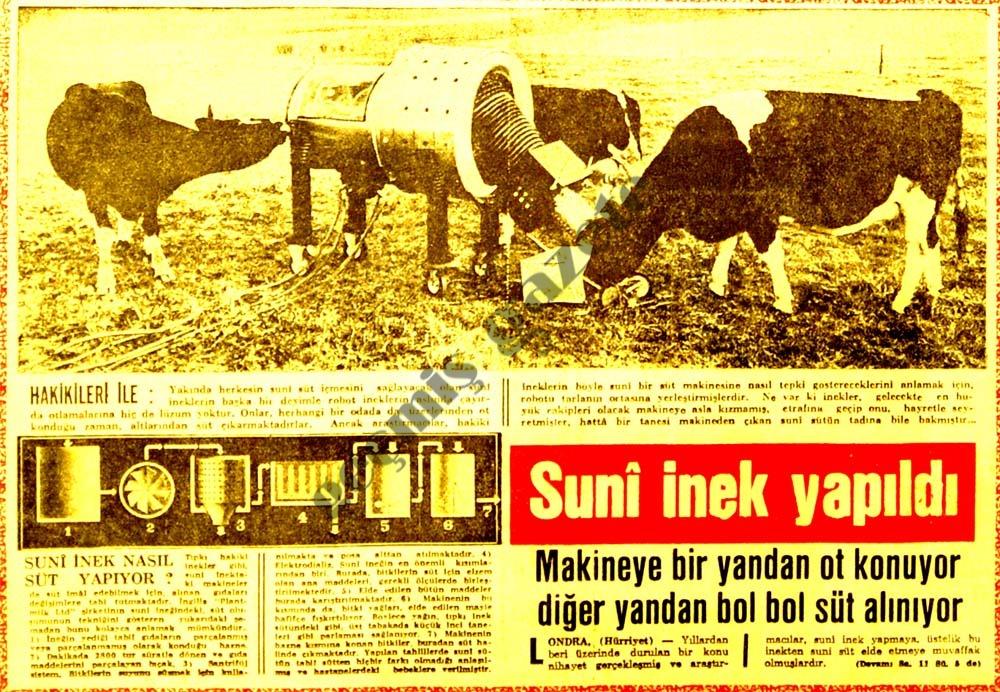 Sunî inek yapıldı